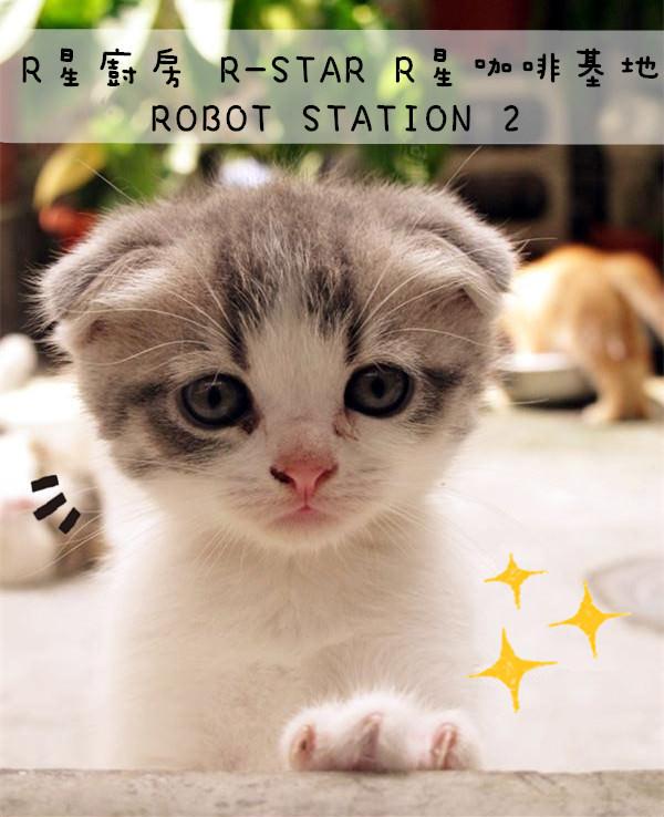 台中西區美食 | R星廚房 R-STAR R星咖啡基地 ROBOT STATION 2 外星人主題餐廳 貓咪餐廳