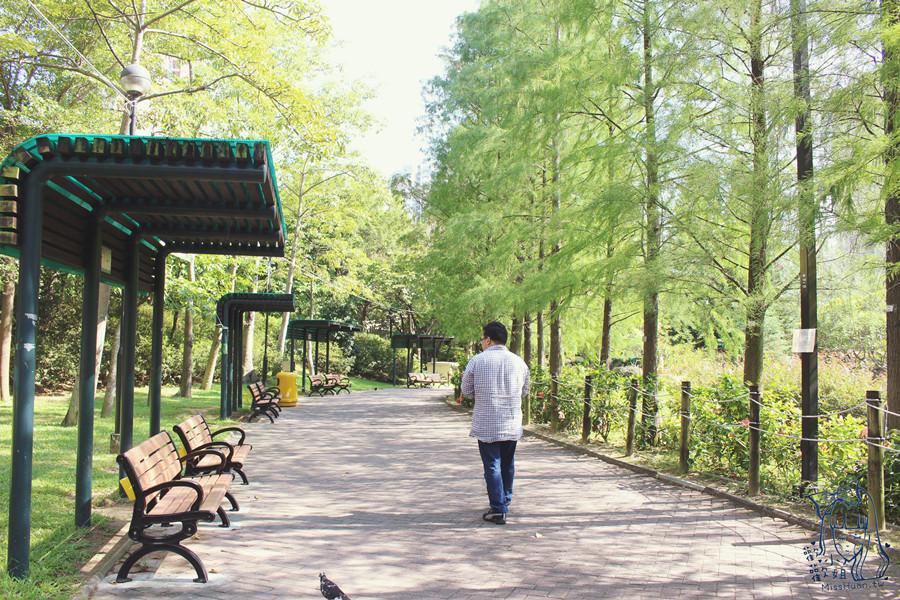 香港葵青景點 | 青衣公園 TSING YI PARK 新界西中秋綵燈會