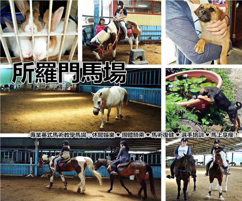 新竹竹東騎馬 | 所羅門馬場 英式馬術教學 馬術復健 選手培訓 馬上享瘦