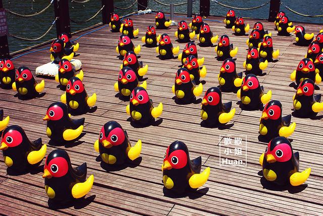 鯉魚潭風景區 ( 2015 花蓮紅面鴨 Fun 假趣 )