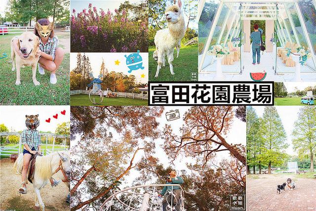 桃園大溪景點 | 富田花園農場 婚紗攝影 戶外婚宴廣場 BBQ烤肉 花田 愛情天梯