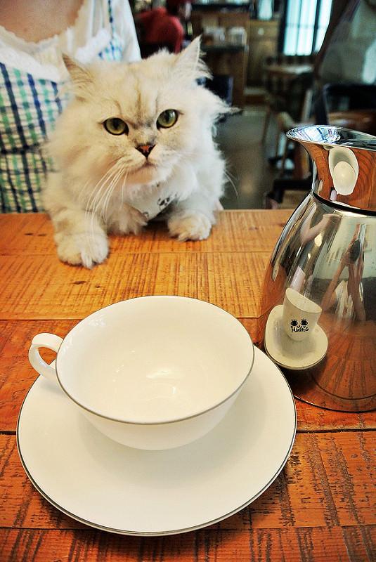 台北松山美食 | 樂樂咖啡 我們提供甜點 輕食與咖啡 還有一些茶哦 !!!