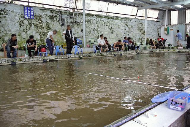 台北士林釣蝦 | 車輪釣蝦場 上陽明山釣蝦去
