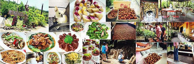 西拉雅農特產體驗之旅 ♥ 龍湖山生態農莊