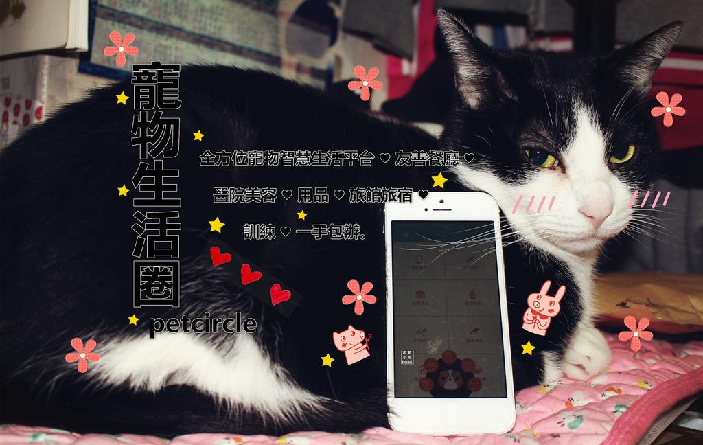 寵物app | 寵物生活圈 全方位寵物智慧生活平台 友善餐廳 醫院美容用品 旅館旅宿 訓練
